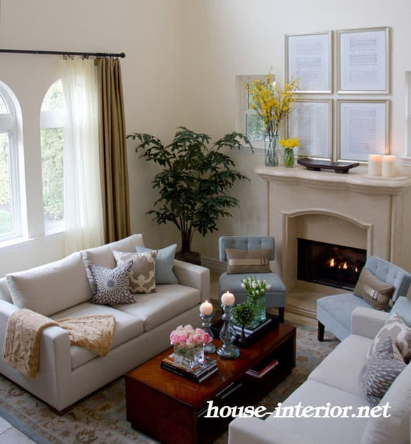 Clasic Living Room Ideas
