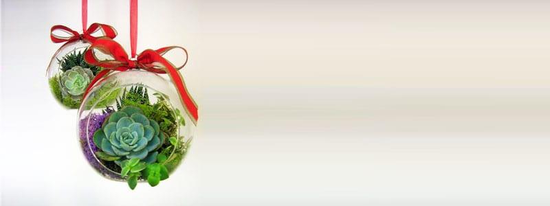 Christmas-decoration-ideas-2017- Christmas-ornaments- xmas-decorations-Christmas-decoration-made- succulents-1