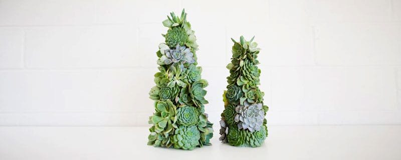 Christmas-decoration-ideas-2017- Christmas-ornaments- xmas-decorations-Christmas-decoration-made- succulents-2