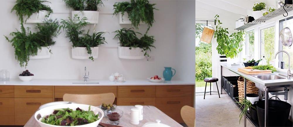Biophilic-Eco-kitchens-2018-kitchen-trends-kitchen-decor-ideas-2018 kitchen trends-Eco kitchens