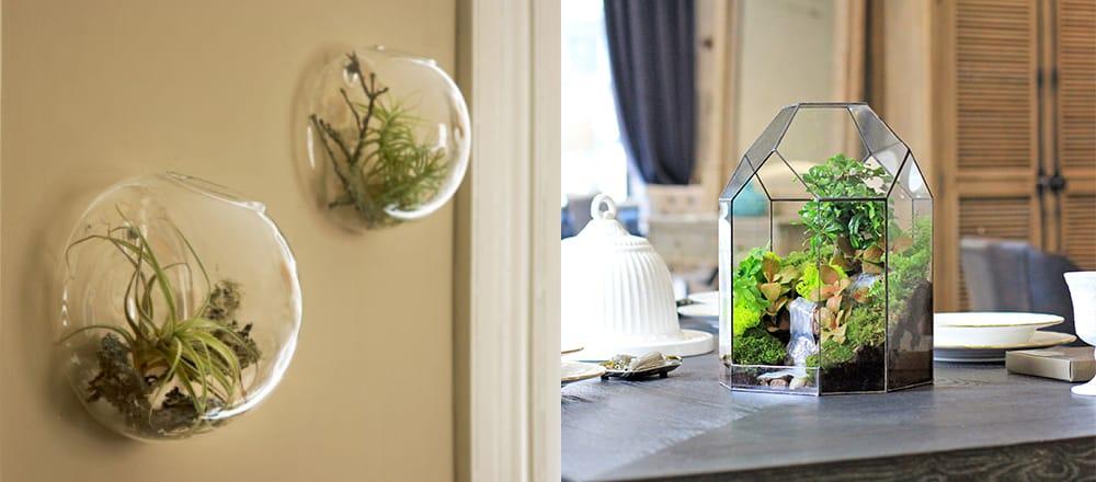 Florariums-Eco-kitchens-2020-kitchen-trends-kitchen-decor-ideas-kitchen decor ideas