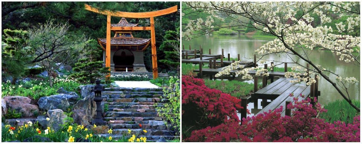 Landscape design 2019: japanese landscape